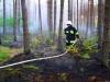 Pożar w lesie - fot. Marek J. Lejk